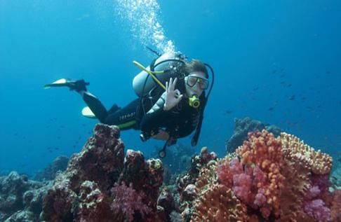 bali tour diving balitourmurah.com