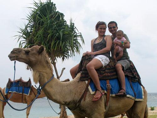 wsaita unta di Bali - Balitourmurah.com