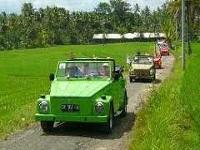 sewa mobil VW safari balitourmurah.com