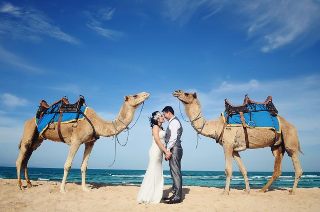 Camel Safari Prewedding