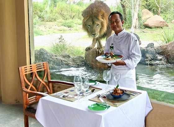 Tsavo Lion Restaurant,........